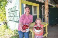 Cabot Patch Farms, Cabot Arkansas